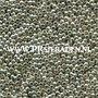 Metallic-silver-Preciosa®--seed-beads