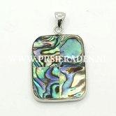 Abalone-rechthoek-schelp-bedel