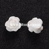 Witte-roos-kraal